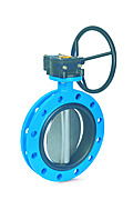 Butterfly Valve ECLI Flange Type